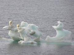 global warming is fake Global warming is real : get the facts now global warming is the challenge of our times it is important not as an isolated, ambiguous theory or political wedge issue but how the reality of global warming impacts nearly every.