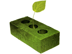 The Green Paradigm Shift - The UN Wants the Globe to Invest $1.3 Trillion