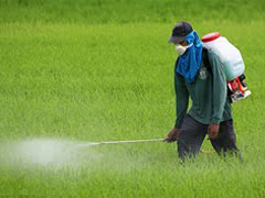 Pesticides: on the grass, on our feet, on our animals, in our food and water
