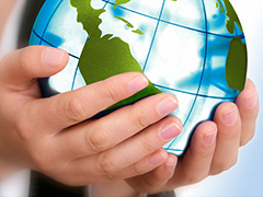 Sustainability-consultants