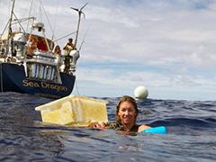 ocean Plasticization